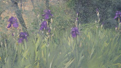 Padova, Van Gogh e 11 mostre monografiche di artisti contemporanei