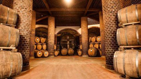 Roero Wine Week  sposa il Tartufo Bianco d'Alba