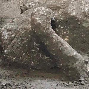 Archeologia, scoperti due corpi pompeiani grazie all'antica tecnica dei calchi in gesso