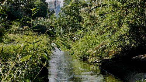 Ambiente e creatività. L'esperimento in Sicilia sul fiume Oreto
