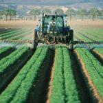 Agricoltura post Covid: i finanziamenti, opportunità di rilancio
