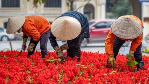 Lavoratori in Vietnam