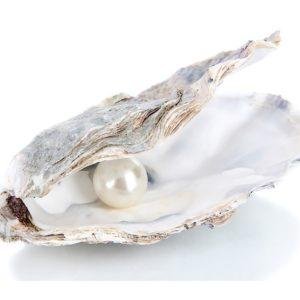 Le perle. La loro storia e il loro valore