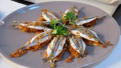 L'Italia che resiste: A Formia Michele Chinappi lancia un format di pescato innovativo