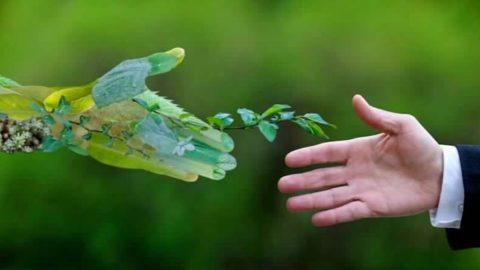 Recovery Plan, le 10 priorità degli ambientalisti