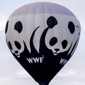 WWF: Governo e Cultura ambientale per il Paese