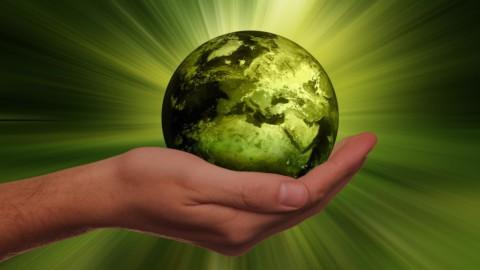 Investimenti sostenibili: boom 2020 e rivoluzione in arrivo