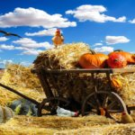 Agroalimentare: la Puglia test per una ripresa sostenibile post Covid