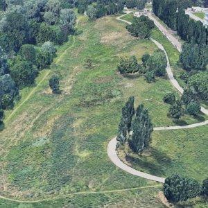 Torino, Rina e Arbolia (Snam e Cdp) piantano 2.100 alberi