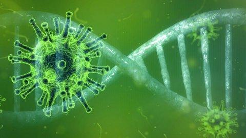 Covid, anticorpi monoclonali riducono il rischio del 70%