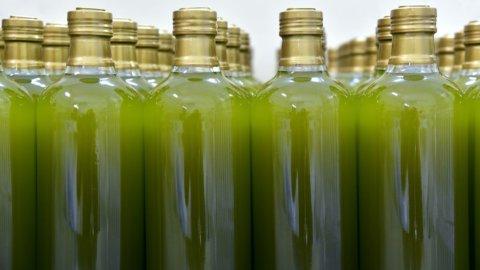 Olio Extravergine d'Oliva: Slow Food indica i migliori d'Italia