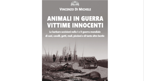 "Vincenzo Di Michele: ""Animali in guerra, vittime innocenti"""