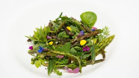 La ricetta di Antonio Ziantoni, una crème brulée trionfo di erbe di primavera