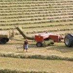Agricoltura sostenibile: i rifugiati stranieri vanno a lezione