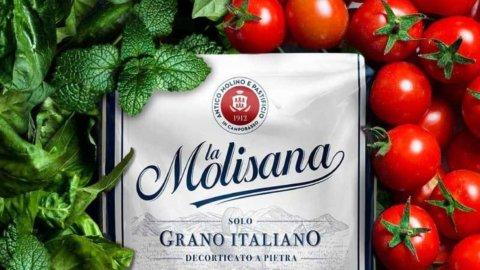 """""""Sua maestà il grano"""": maxifinanziamento per aziende cerealicole di """"La Molisana"""""""