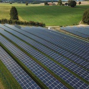 Agricoltura e sostenibilità: Enel X si allea con Genagricola