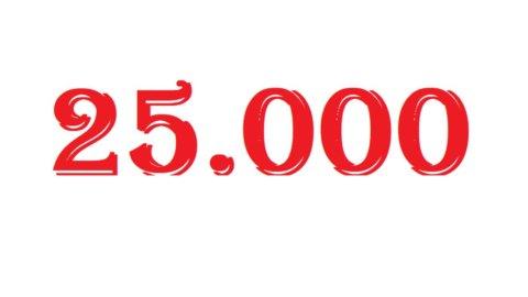 Borsa a 25.000