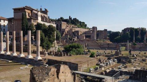 Archeologia e sostenibilità, a Roma torna il vino sul foro Palatino