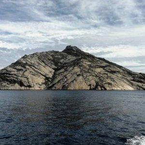 Montecristo, l'isola dei misteri ai tempi del Covid