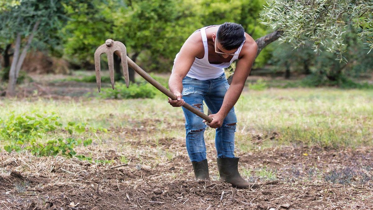 giovane agricoltore lavoro nei campi