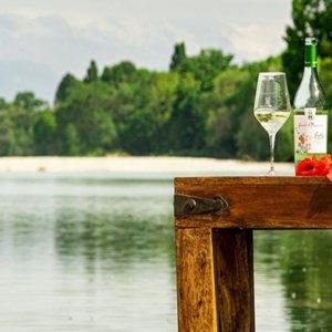 Fysi: il vino bioresistente friulano che guarda ai giovani e al futuro del pianeta