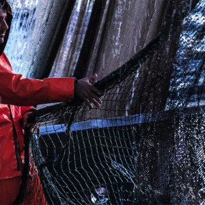 """Pesca: via libera alla """"Zona economica esclusiva"""" dell'Italia"""
