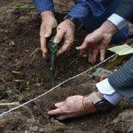Hortus Vini: con Luca Maroni alla scoperta delle migliori etichette di vitigni autoctoni