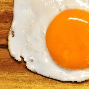 Next Egg 1.0: arriva l'uovo vegano dal Giappone