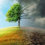 La transizione ecologica rischia il disastro