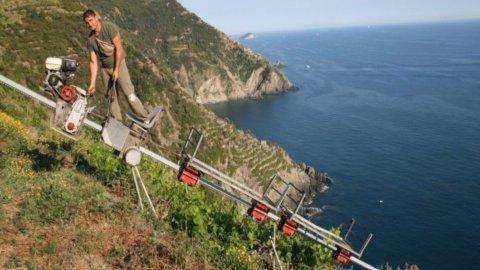 Mondiale Vini Estremi: un giovane viticoltore piemontese premio Cervim Futuro 2021
