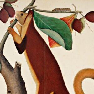 Sotheby's porta in asta l'arte indiana del XVIII e XIX secolo