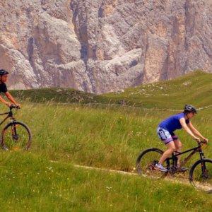 Biciclette e e-bike, un'industria (verde) da 9 miliardi