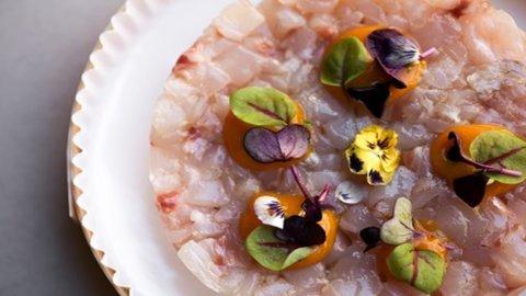Casual Dining, due giovani a Milano lanciano nuovo concept di ristorazione