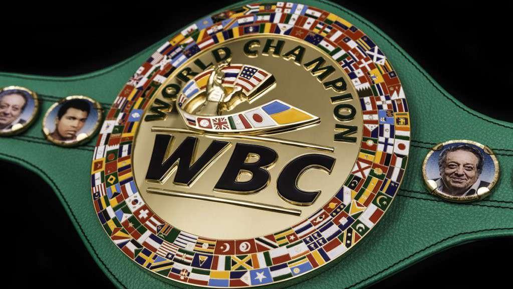 Campione Mondiale di Boxe
