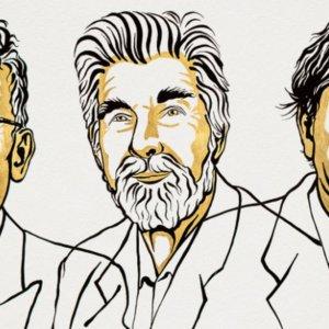 Premio Nobel per la Fisica 2021 all'italiano Giorgio Parisi