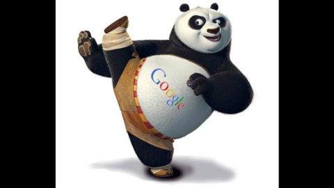 Google effetto Panda sulla rete
