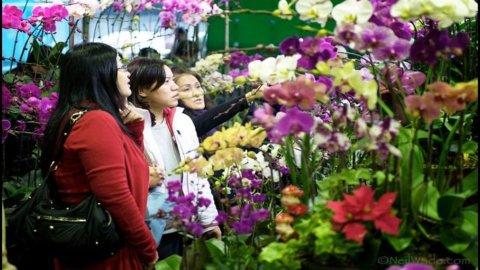 Taiwan, il 40% dei lavoratori è straniero