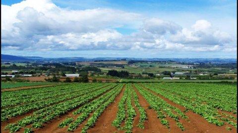 Il ricambio generazionale in agricoltura: tre regole da non dimenticare