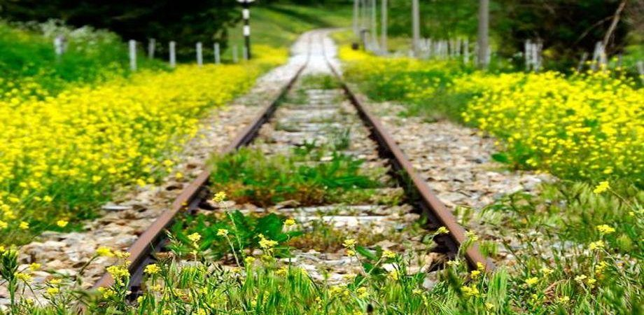 Sciopero autonomi, treni a rischio i prossimi 25, 26 e 27 novembre