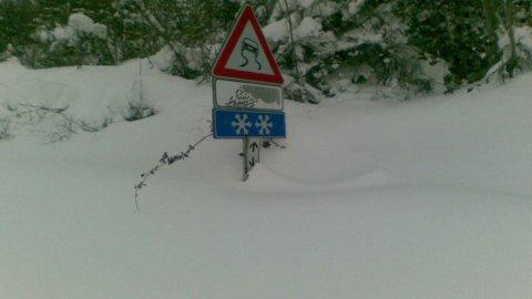 Neve, ora è rischio gelo e arrivano i lupi