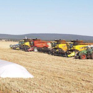 L'agricoltura under 40? In Italia è un flop. Ecco perché
