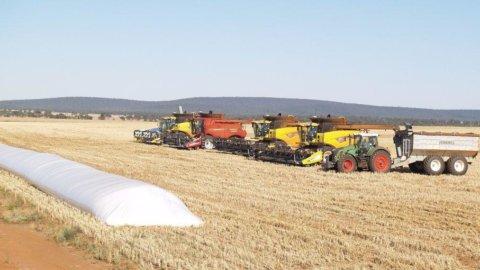 Agricoltura: raccolti pessimi in Usa, boom invece in Brasile