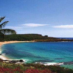 Il magnate americano Larry Ellison si regala un'intera isola alle Hawai. Costo? 500-600 milioni di $
