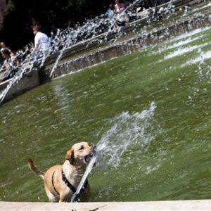 Caldo record: con Minosse l'estate più torrida da 50 anni