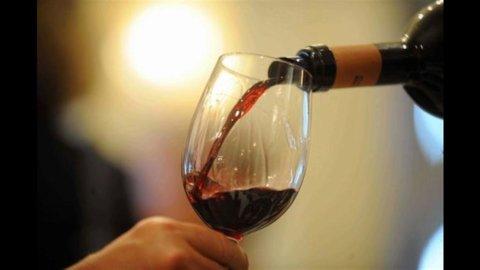 Vini toscani: Brunello e Bolgheri al top, vacilla il Chianti Classico