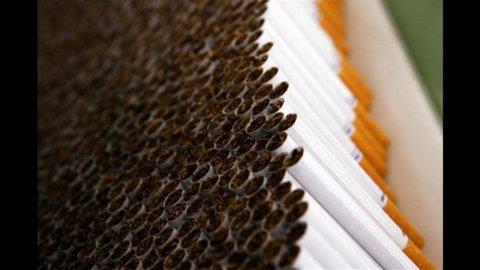 Ue: il Parlamento approva maxi avvisi per la salute sulle sigarette