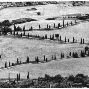 Venezia, anteprima internazionale in bianco e nero di Berengo Gardin
