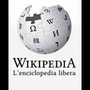 Wikipedia in crisi: persi 250 milioni di utenti in tre mesi