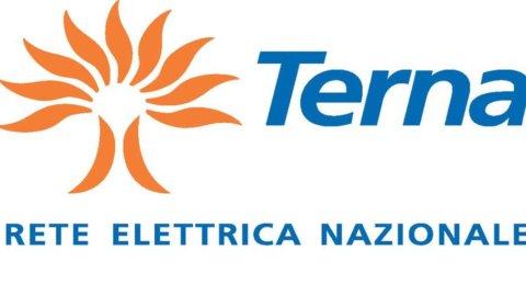 Semestrale, Terna: +18,8% utile netto a 263,7 milioni di euro