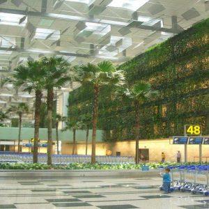 In Asia gli aeroporti da mille e una notte: Singapore il migliore al mondo